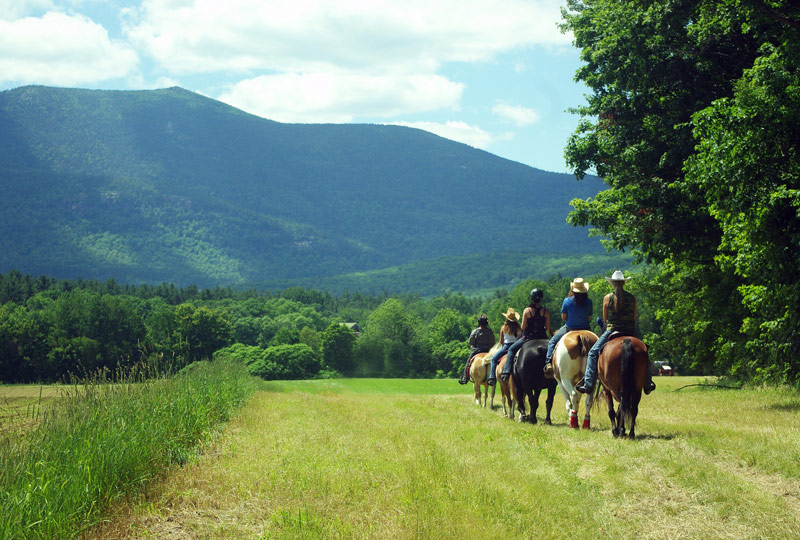 Farm by the River Bed and Breakfast with Stables, North Conway, NH